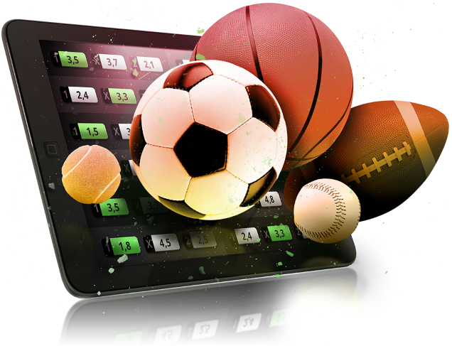bookie software sports
